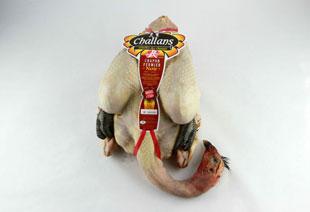 photo du produit de Noël Dinde noire fermière de Challans                                              ( environ 3kg )